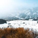 Poço da Neve